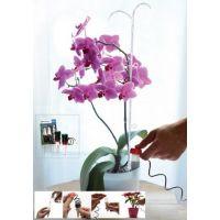 Automatický dávkovač vody pro pokojové rostliny
