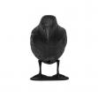 Havran - strašák ptáků a hlodavců