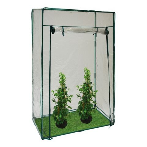 Zahradní fóliovník / pařník D40982